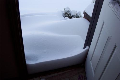 Back door.