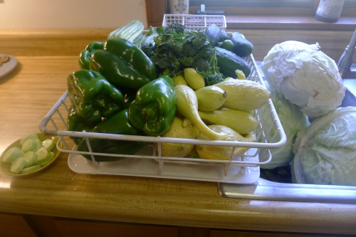 green peppers and yellow crookneck