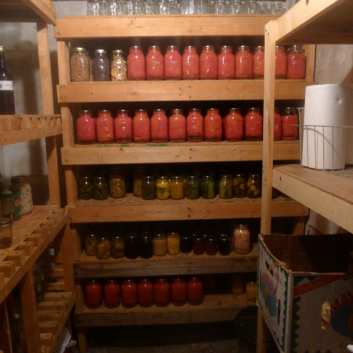 Our root cellar with shelves of canned goods.